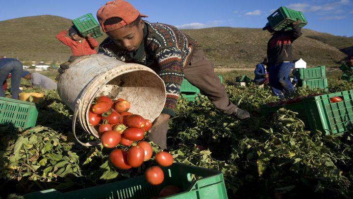 ارتفاع عمالة الأطفال في العالم إلى 160 مليونا لأول مرة منذ عقدين