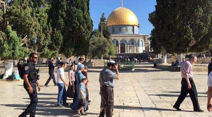 القدس:مستوطن يعتدي على طفلين قرب باب الخليل