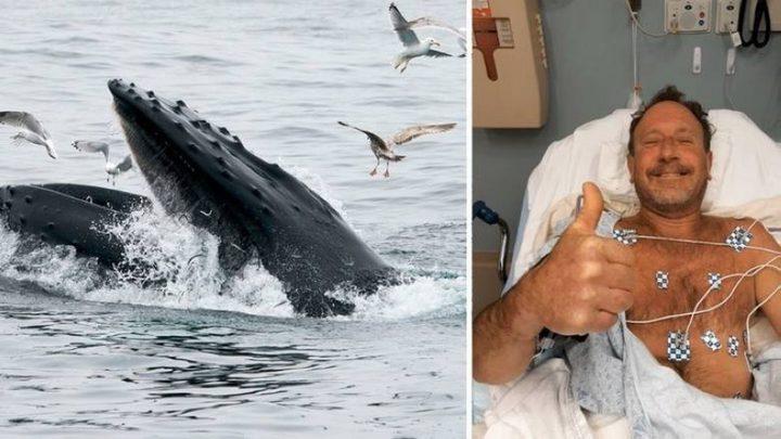 صياد أمريكي ينجو بأعجوبة من فم حوت ابتلعه 30 ثانية