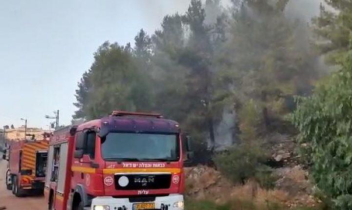 حريق هائل في جبل القفزة بالناصرة