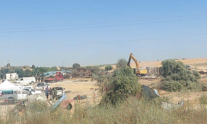الاحتلال يقتلع أشجار زيتون ويهدم معرشا في رهط