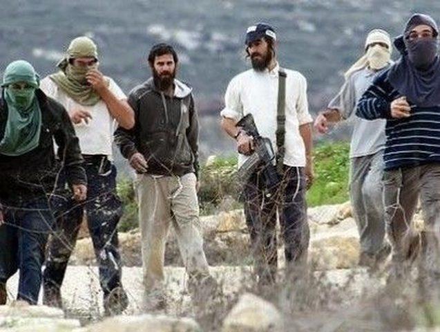 """مستوطنون يعتدون على سائق """" باجر"""" خلال شق طريق زراعي شرق يطا"""
