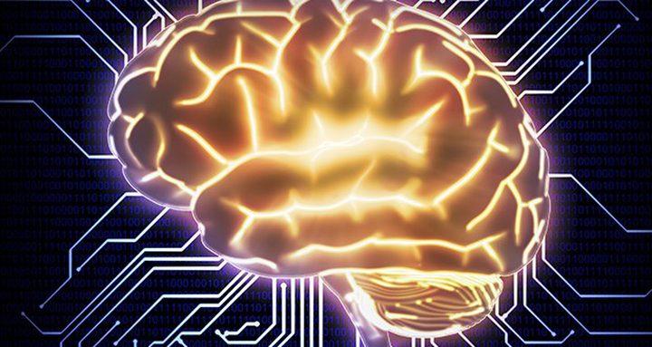 ما هي الفيتامينات التي تعيد تفعيل معالج الدماغ ؟