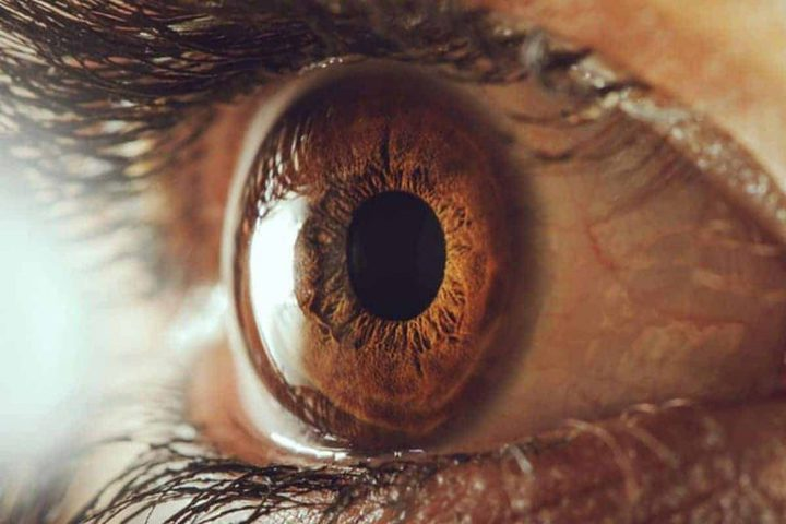 دراسة: حجم حدقة عينك يكشف مستوى ذكائك