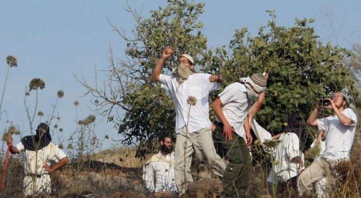 """مستوطنون من """"يتسهار"""" يهاجمون قرية عينابوس جنوب نابلس"""