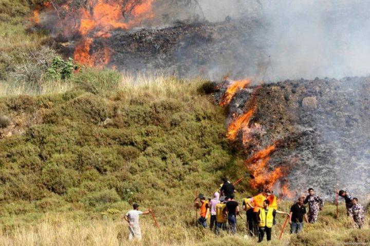 نابلس:مستوطنون يضرمون النار في عشرات الدونمات من الأراضي الزراعية
