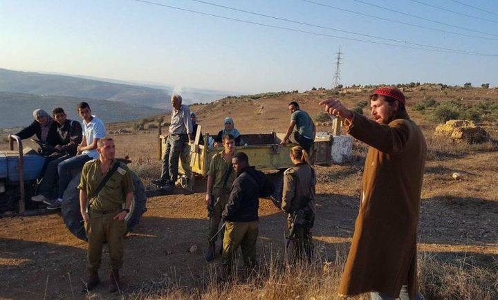 مستوطنون يقتلعون 84 شجرة مثمرة جنوب نابلس