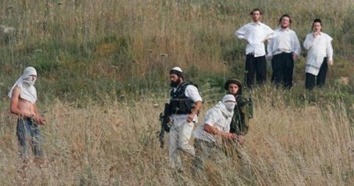 إصابة مواطن ونجله بجروح خطيرة في اعتداء للمستوطنين