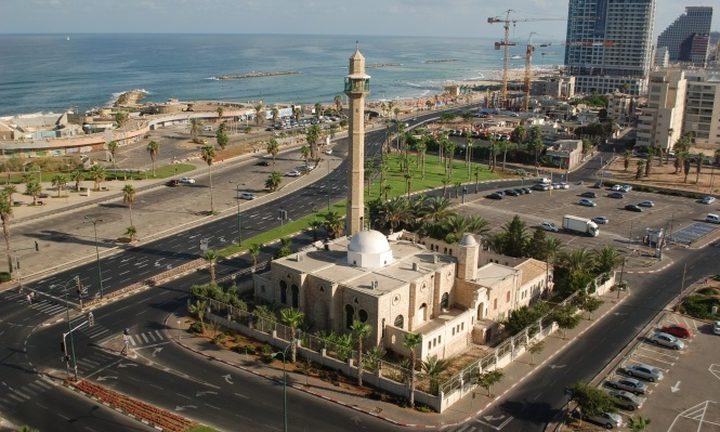 المفتي يدين الاعتداء على مسجد حسن بك في يافا