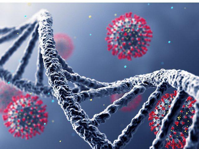 إكتشاف خزان لفيروس كورونا في جسم الإنسان