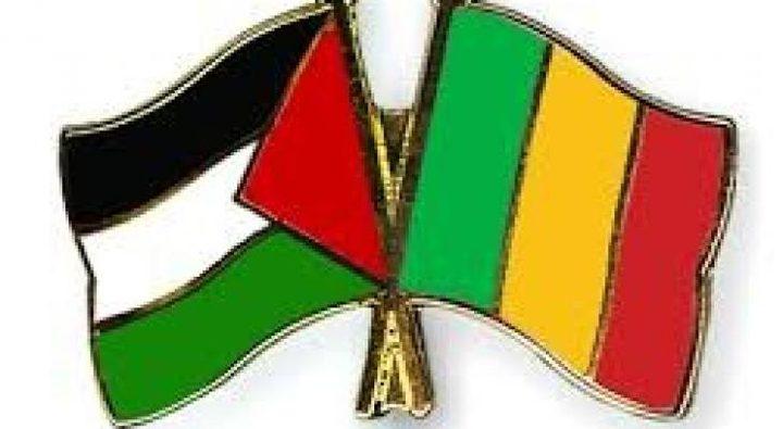 السفير شبلي يبحث مع وزير الثقافة في مالي سبل تعزيز التعاون