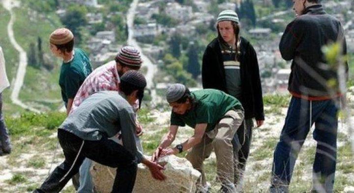 مستوطنون يزرعون أشجارا في منطقتي الفارسية وعين الحلوة