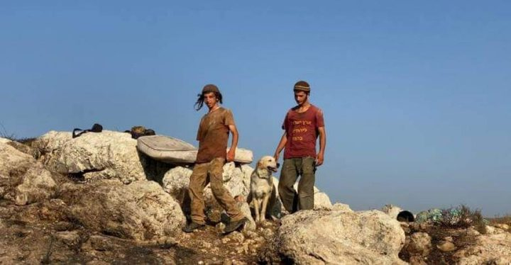 """جنين:مستوطنون يستولون على جبل """"أبو الشوارب"""""""