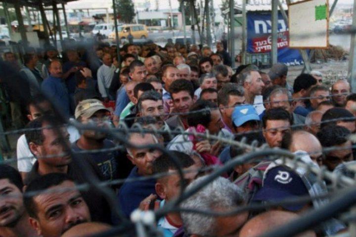 حكومة الاحتلال تناقش زيادة عدد تصاريح العمل للفلسطينيين