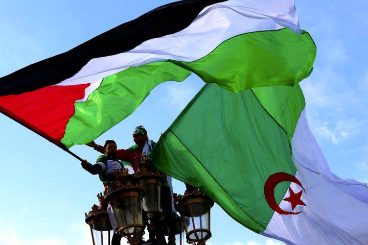 الجزائر: مراقب جديد لن يؤثر على الدعم الثابت للقضية الفلسطينية