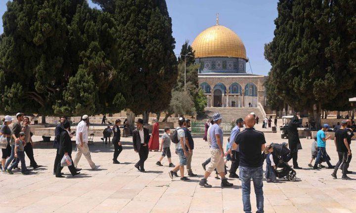 مستوطنون يقتحمون باحات المسجد الأقصى صباح اليوم
