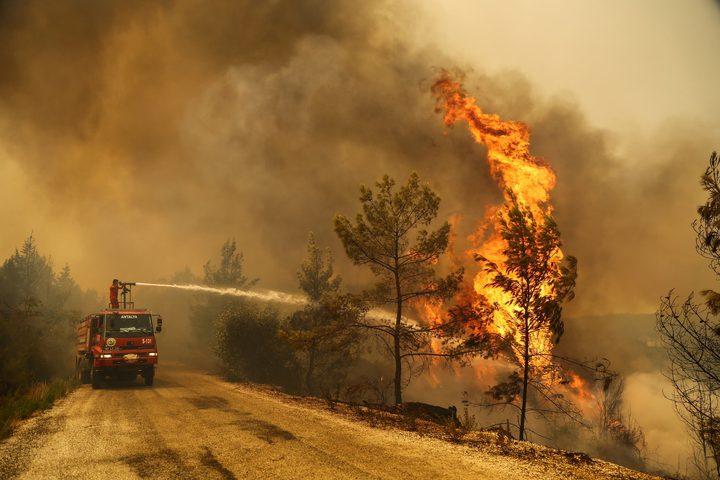 ارتفاع حصيلة قتلى حرائق الغابات إلى 8 في تركيا