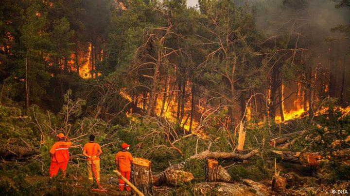 السيطرة على 209 حرائق في 47 ولاية في تركيا