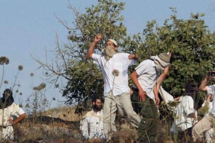 نابلس:مستوطنون يهاجمون منازل المواطنين في عوريف