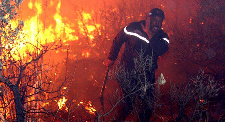 الدرك الجزائري يلقي القبض على شخص بصدد إشعال حريق