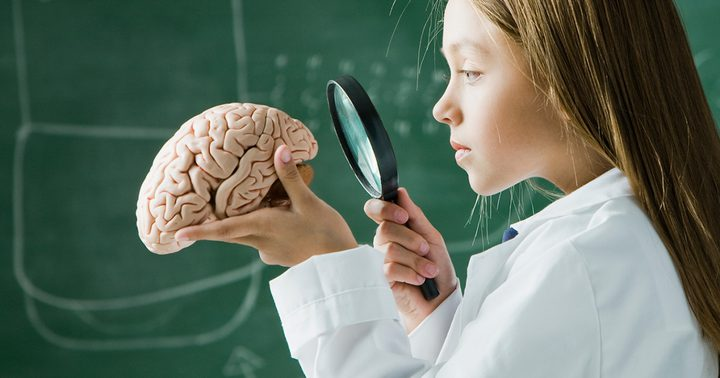 ما هي أفضل الأطعمة لتغذية الدماغ ؟