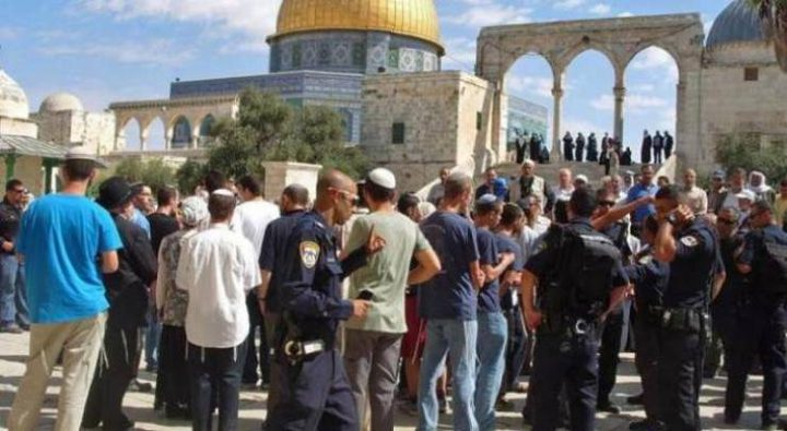 """مستوطنون يقتحمون """"الأقصى"""" واعتقال 3 مقدسيين بعد الاعتداء عليهم"""