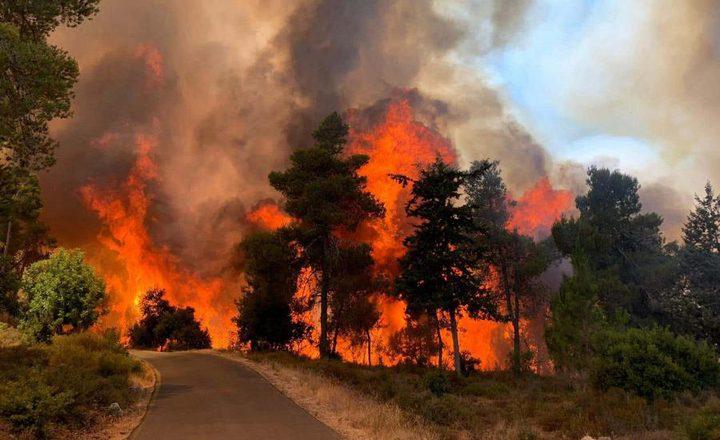 استمرار اشتعال الحرائق في جبال القدس