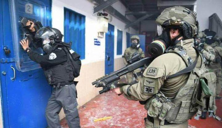 """نادي الأسير: قوات القمع تُنكّل بـ36 أسيرًا في سجن """"مجدو"""""""