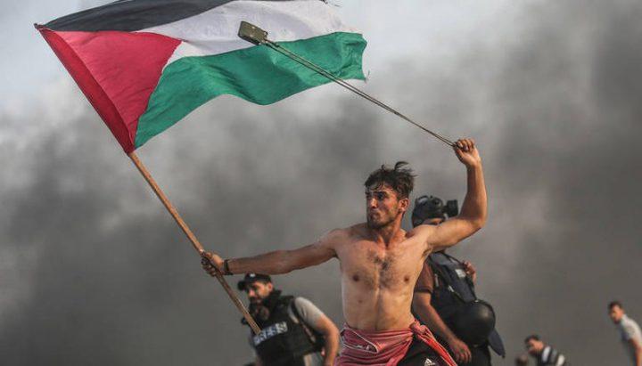 """""""القوى"""" تؤكد تفعيل كل أشكال الوحدة لمواجهة مخططات الاحتلال"""