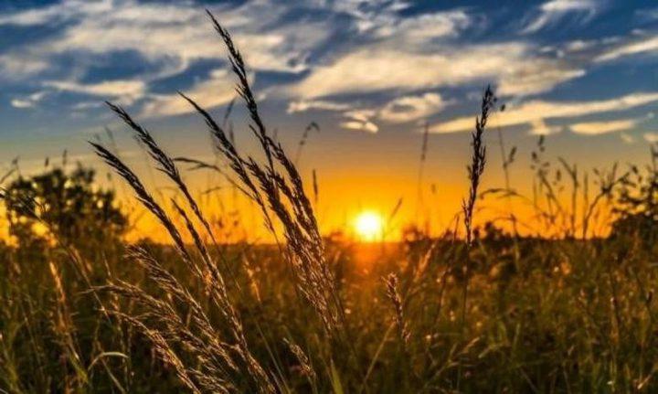 حالة الطقس: أجواء صيفية والحرارة أعلى من معدلها السنوي بقليل