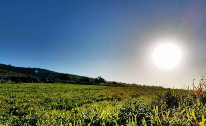 الأرصاد: الحرارة ترتفع 3 درجات مئوية عن معدلها السنوي العام