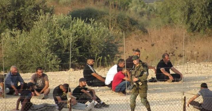 الاحتلال يطارد عمالا قرب نعلين ويصيب عددا منهم بحالات اختناق