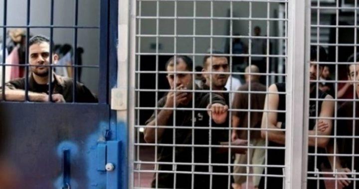 خبير بالشأن الإسرائيلي: الحركة الأسيرة أثبتت فشل الاحتلال
