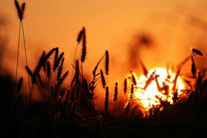حالة الطقس: ارتفاع طفيف على درجات الحرارة بدرجتين مئويتين