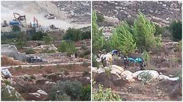 الاحتلال يعتقل 3 شبان بعد إصابتهم إثر اشتباك مسلح شمال القدس