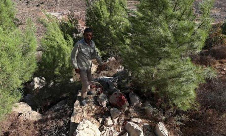 """الاحتلال يزعم أنه عثر على متفجرات تابعة لـ""""خلية"""" حماس في رام الله"""