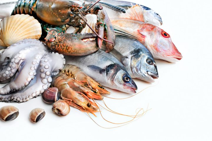 خبير تغذية: تناول الأسماك يحارب اكتئاب فصل الخريف
