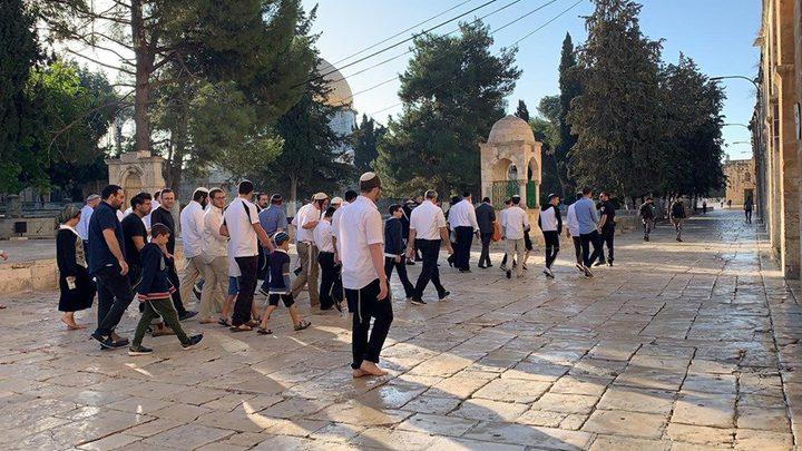مستوطنون يقتحمون الأقصى وشرطة الاحتلال تعتقل مُصليا