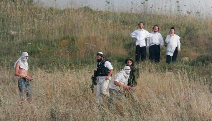 إصابة راعي أغنام بجروح إثر اعتداء مستوطنين عليه جنوب الخليل
