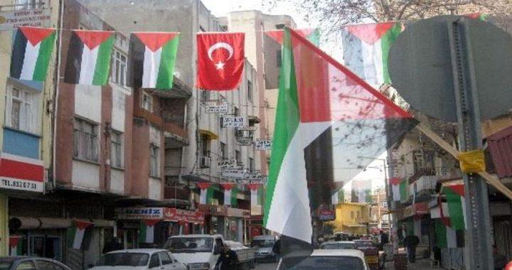 الخارجية: نبذل الجهود لإعادة 7 فلسطينيين اختفوا في تركيا