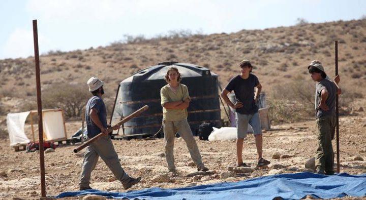 مستوطنون يزرعون أشتال زيتون في أراضي بلدة تقوع تمهيدا لمصادرتها