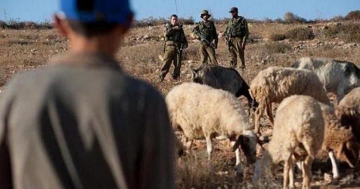 مستوطنون يعتدون على رعاة أغنام شرق بيت لحم