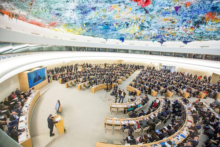 المفوضية السامية تناقش حالة حقوق الإنسان في فلسطين