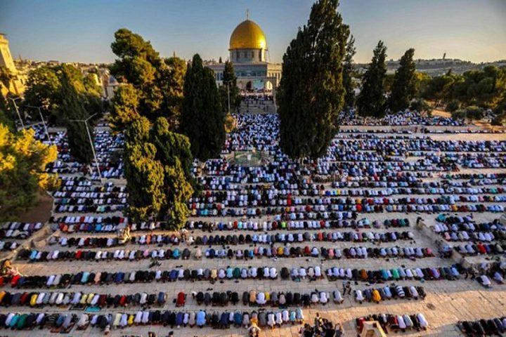 50 ألف مصلٍ يؤدون صلاة الجمعة في رحاب المسجد الأقصى المبارك