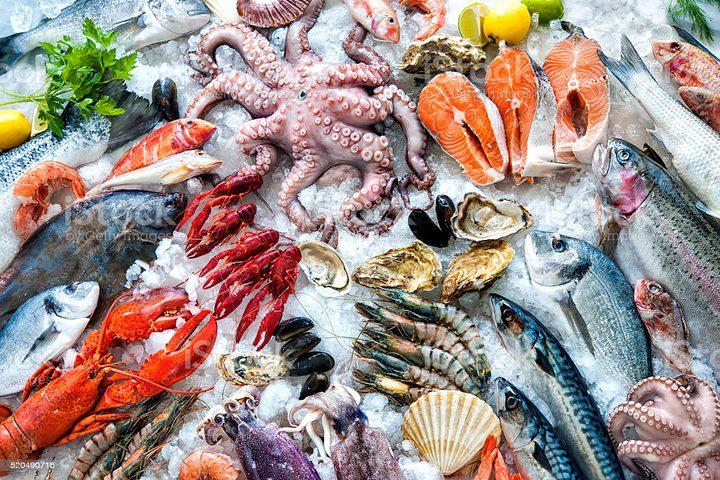 كيف يعالج سمك الماركيل الالتهابات في الجسم ؟