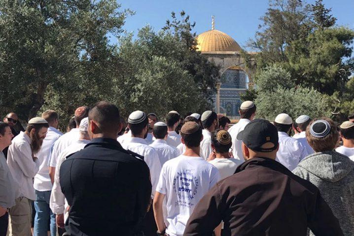 الخارجية المصرية تدين قرار السماح لليهود بالصلاة في المسجد الأقصى