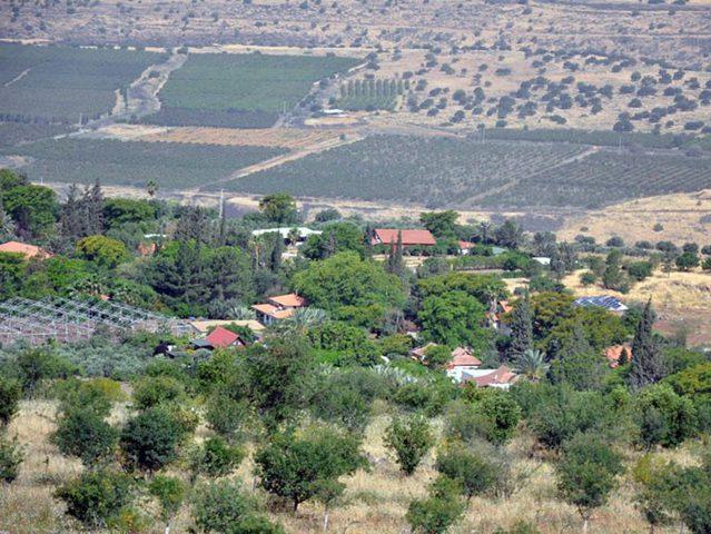 داخلية الاحتلال تعد اقتراحا لإقامة مستوطنات في النقب والجولان
