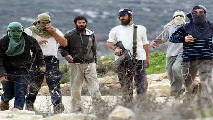 إصابة مواطن واعتقال آخر إثر اعتداء للمستوطنين الخليل
