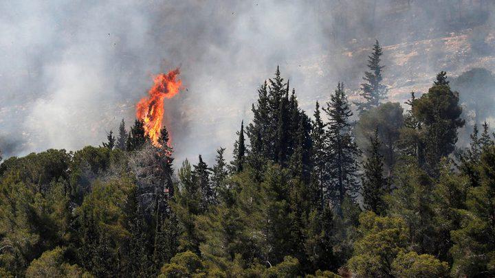 عدة طائرات و 19 فريق إطفاء يواصلون إخماد النيران في جبال القدس