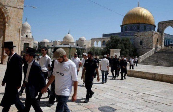 جمعية علماء الهند تدين قرار الاحتلال السماح لليهود الصلاة بالأقصى